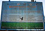 Dr Sing saw this at Lake Indawgyi village, Myanmar, in Dec 24, 2008. Bird flu advice?