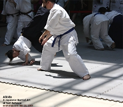 Moves and counter-moves in Aikido, Singapore Demonstration. Asiahomes.com