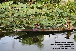 Myanmar. Unpolluted Lake Inle, Mum rows daughter home, 5pm. Oct 2008. Asiahomes.com