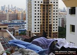 HDB apartments, Singapore. Toa Payoh Vets