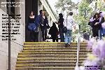 Murdoch University Social Activism. Toa Payoh Vets