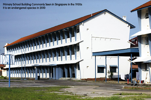 Singapore Primary School in the 1950s period. toa payoh vets