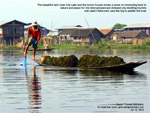 Inle_Lake_fisherman_leg_paddling_Designtravel
